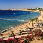 SONIA Expedition – Sharm El Sheikh 2012